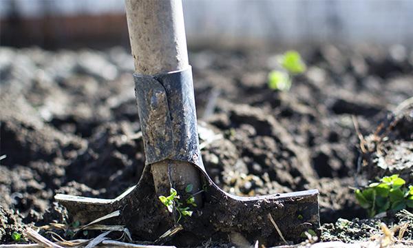 Zamena poljoprivrednog zemljišta